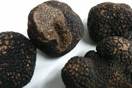 フランス産黒トリュフ